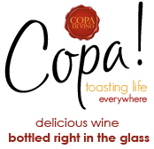 Why James of Vino Di Copa was Right (Not Wrong) to Turn down the offers from the Shark Tank